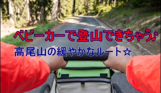 高尾山をベビーカーで登頂!!オススメルートはこれ!