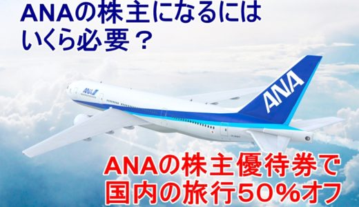ANAの株主優待で50%オフ?株主になるにはいくらかかる?