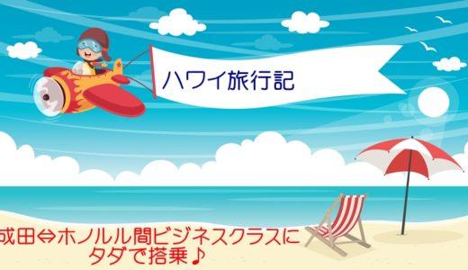ANA成田⇔ホノルル☆フライングホヌ(A380型機)に搭乗☆