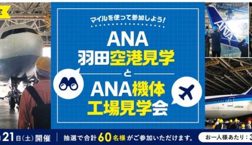 【小学生~OK!】ANA機体工場見学ツアー申込開始!